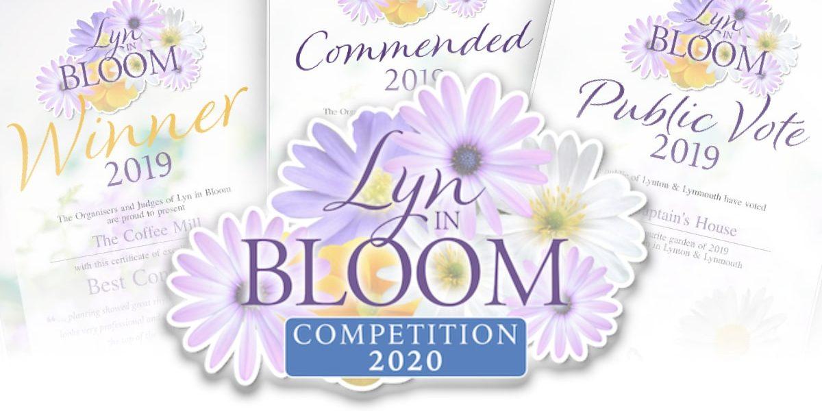 Bloom-Comp-Header